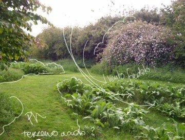 come progettre un giardino
