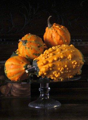 zucche ornamentali 1