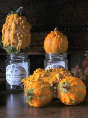zucche ornamentali 2