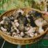 Funghi precoci: Hygrophorus marzuolus il fungo dormiente