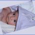 Filobio: cotone biologivo a prova di bambino