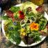 Piatti a base di fiori a Bolzano nel fine settimana