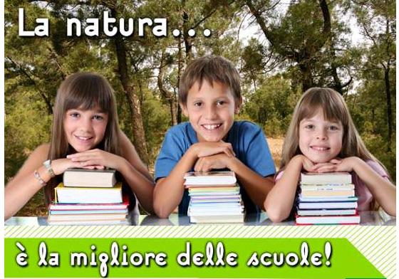 1276166913natura.jpg