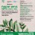 Pagine verdi: a Lucca un seminario su Carta, etere, rete