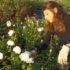 Corso di potatura e coltivazione delle rose antiche