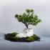Pianta il tuo albero nelle scarpe: con Oatshoes si può, l'ambiente ringrazierà