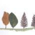 Storia e vita degli alberi, 20 storie con radici