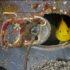 Disastro nucleare: le foto dei fondali prima di Fukushima