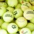 Con le palline da tennis usate si fanno campi da gioco