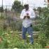 Urban gardening: boom di orti dopo l'uragano Katrina