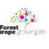 Gas serra: nelle foreste i corridoi per gli animali