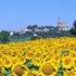 Meteo in Toscana: i migliori link per le previsioni del tempo