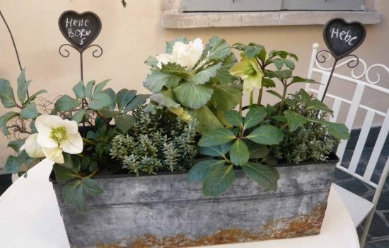 Terrazzo Con Piante Aromatiche ~ Idee Creative di Interni e Mobili
