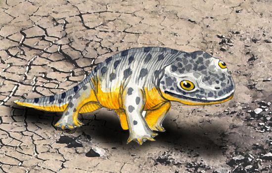 Come si spostavano i dinosauri sulle Alpi, uno studio del Muse
