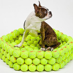 Dog_Bed_Made_Tennis_Balls.jpg