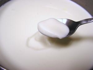 yogurt scaduto