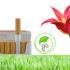 Arriva la sigaretta biodegradabile che diventa concime per il giardino
