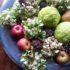 La Maclura pomifera per splendide composizioni floreali