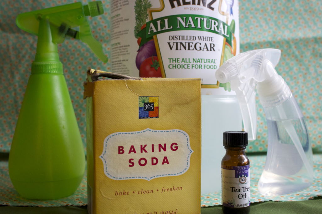 homemade_cleaning_products.jpg