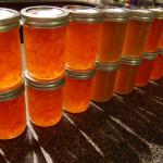 Marmellata di arance: facile, veloce e gustosa