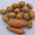 3 ricette veloci per riciclare le patate lesse
