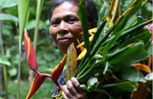 costarica indigena