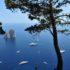Capri: la perla del Mediterraneo