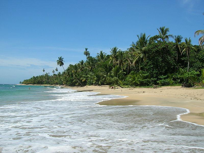 800px-Playa_de_Punta_Uva,_Costa_Rica