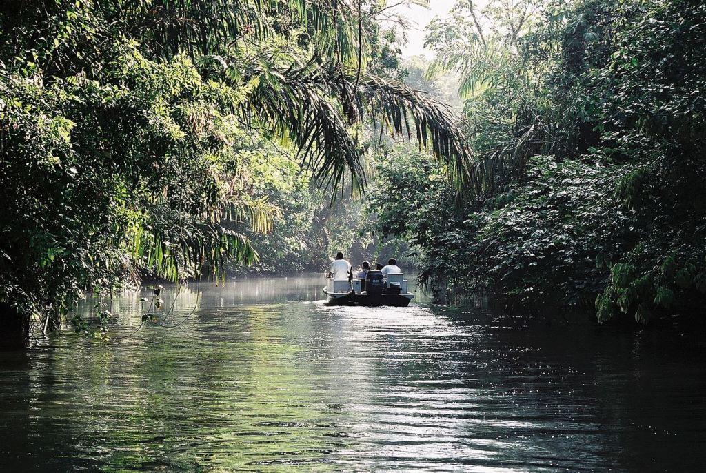 Tortuguero_boat