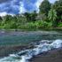 Costarica: alla scoperta di scimmie, tucani e bradipi