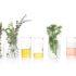 Bio-Oil: l'olio che migliora visibilmente l'aspetto della pelle
