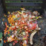 Il compost biodinamico: come prepararlo e somministrarlo