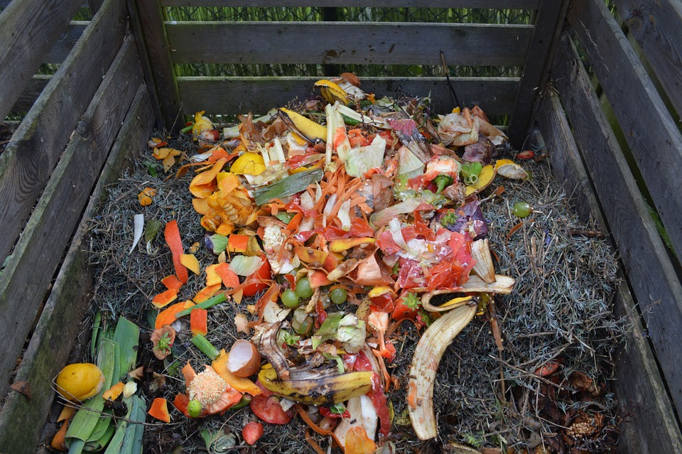 COMPOST BIODINAMICO