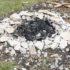 L'uso della cenere nell'orto e nel giardino (le guide)