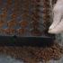 Erbe aromatiche : il video tutorial della semina (le guide)
