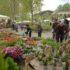 Appuntamenti febbraio 2017: bio, orto, giardino e benessere