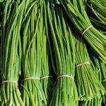 Erba cipollina : semina, trapianto e conservazione nell'orto bio