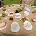 Leguminose : semina, rotazione e vantaggi per l'orto biologico