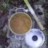 Il polisolfuro di calcio : contro ragnetto rosso, cocciniglia e fumaggine