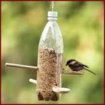 Becchime_per_uccelli