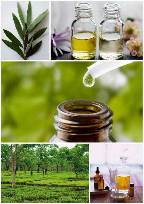 TEA_TREE_OIL_E_TUTTI_I_SUOI_RIMEDI_NATURALI