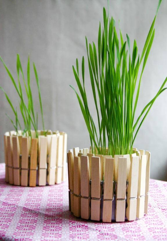 Vaso_per_piante